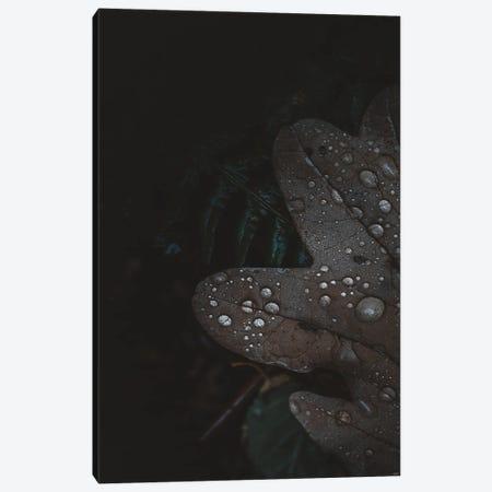 Secret V Canvas Print #FBK405} by Design Fabrikken Canvas Artwork