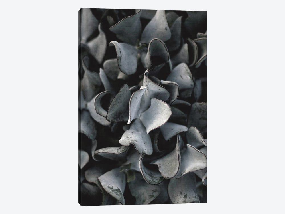 Secret X by Design Fabrikken 1-piece Canvas Art Print