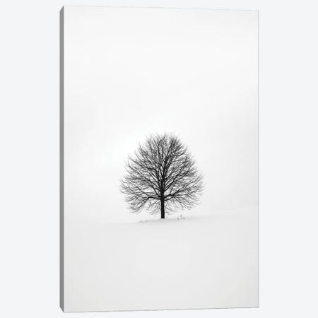 Solitary I Canvas Print #FBK427} by Design Fabrikken Canvas Artwork