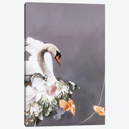 Swan Gold I Canvas Print #FBK435} by Design Fabrikken Canvas Art Print