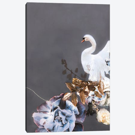 Swan Gold II Canvas Print #FBK436} by Design Fabrikken Canvas Print