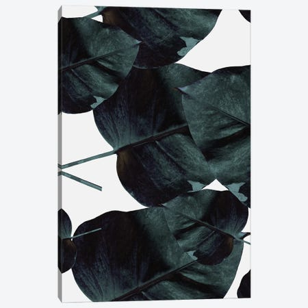 Tropic Sensation Canvas Print #FBK456} by Design Fabrikken Art Print