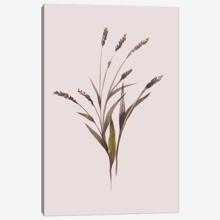 Wheat Canvas Print #FBK471} by Design Fabrikken Canvas Artwork