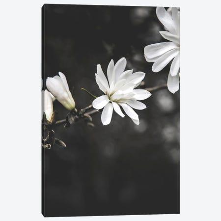 White Flowers Canvas Print #FBK472} by Design Fabrikken Canvas Artwork