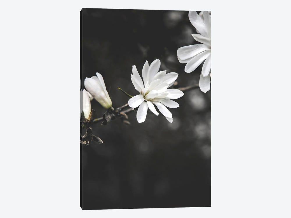 White Flowers by Design Fabrikken 1-piece Art Print