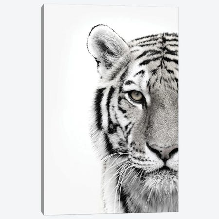 White Tiger Canvas Print #FBK475} by Design Fabrikken Canvas Print