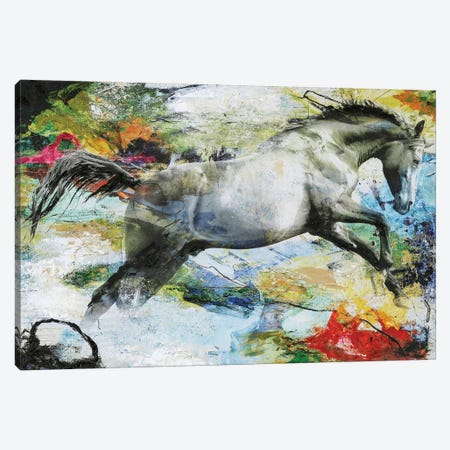 Horse Canvas Print #FBK70} by Design Fabrikken Canvas Art