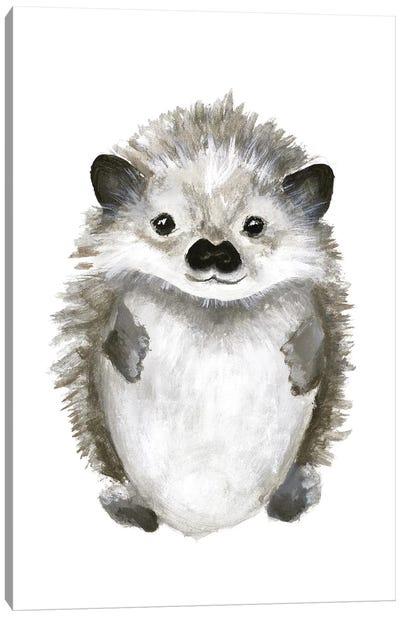 Little Hedgehog Canvas Art Print