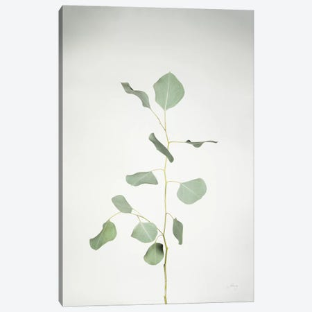 Simple Stems I 3-Piece Canvas #FBR13} by Felicity Bradley Art Print