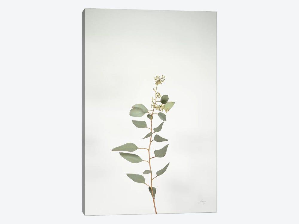 Simple Stems II by Felicity Bradley 1-piece Art Print
