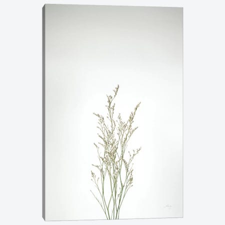 Simple Stems V Canvas Print #FBR17} by Felicity Bradley Canvas Wall Art