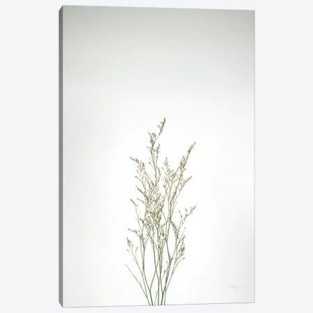 Simple Stems V Canvas Print #FBR17} by Felicity Bradley Canvas Wall Art