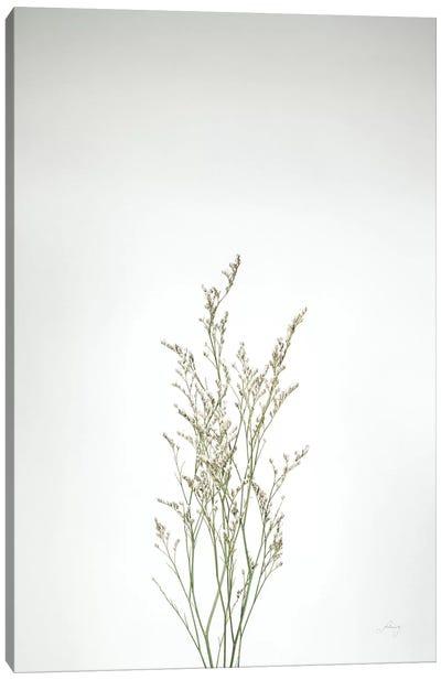Simple Stems V Canvas Art Print