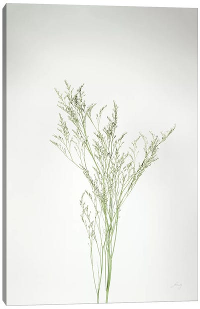 Simple Stems VII Canvas Art Print