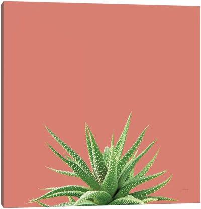 Succulent Simplicity I Coral Canvas Art Print