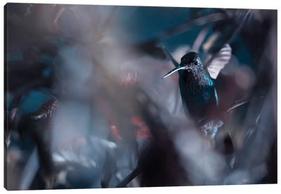 50 Hz Canvas Art Print