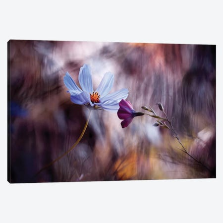Le Rendez-Vous Canvas Print #FBV3} by Fabien Bravin Canvas Artwork