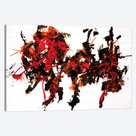 Synesthesia III Canvas Print #FDA17} by Francesco D'Adamo Canvas Print