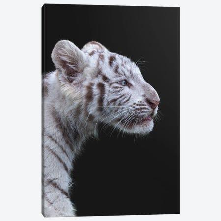 The Hunter Canvas Print #FEG10} by Fegari Art Print