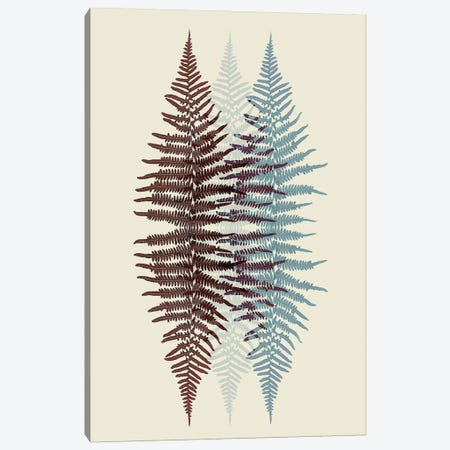 Chocolate And Teal Fern Pattern Canvas Print #FEN103} by Alyson Fennell Canvas Artwork