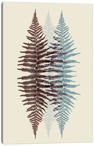 Chocolate And Teal Fern Pattern Canvas Art Print