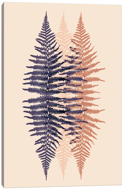 Late Sunset Fern Pattern Canvas Art Print