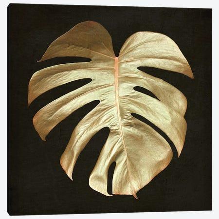 Gold Monstera Leaf Canvas Print #FEN116} by Alyson Fennell Canvas Artwork