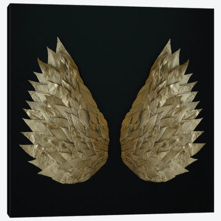 Gold Leaf Angel Wings Canvas Print #FEN126} by Alyson Fennell Art Print
