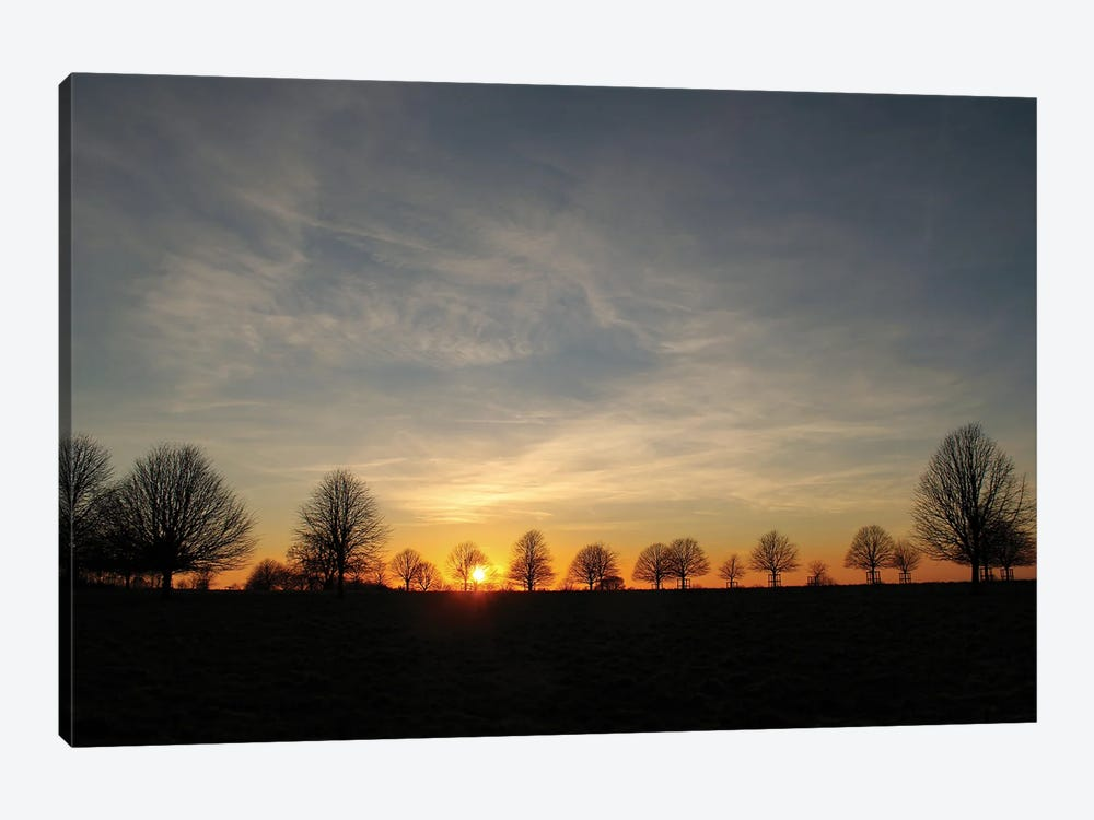 Winter Trees Sunset by Alyson Fennell 1-piece Canvas Artwork