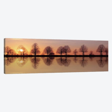 Winter Trees Sunset Reflection Canvas Print #FEN143} by Alyson Fennell Canvas Wall Art