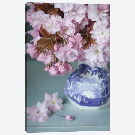 Cherry Blossom Still Life Canvas Print #FEN144} by Alyson Fennell Art Print