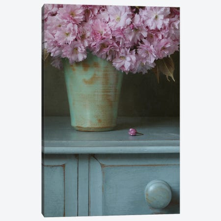 Cherry Blossom And Bud Still Life Canvas Print #FEN146} by Alyson Fennell Canvas Art Print