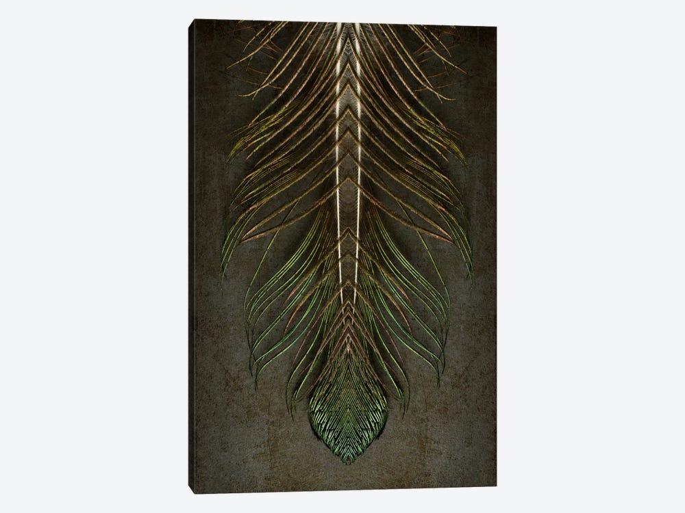 Peacock Feather Symmetry Archangel by Alyson Fennell 1-piece Canvas Art