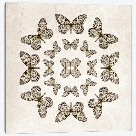Rice Paper Butterfly Circles Canvas Print #FEN84} by Alyson Fennell Canvas Wall Art