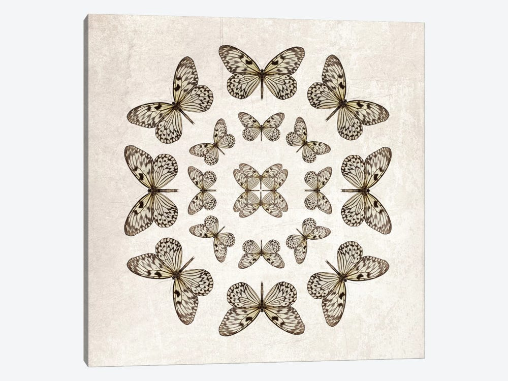 Rice Paper Butterfly Circles by Alyson Fennell 1-piece Canvas Print
