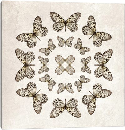 Rice Paper Butterfly Circles Canvas Art Print