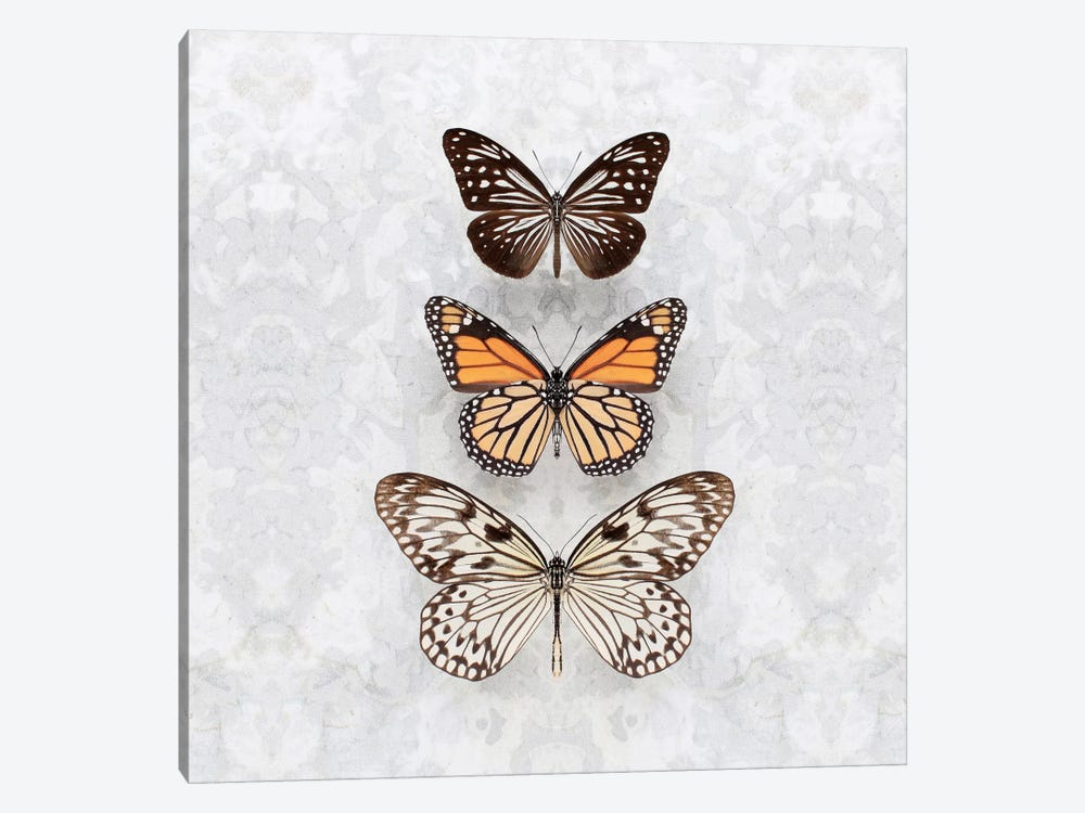 Three Speckled Butterflies by Alyson Fennell 1-piece Art Print