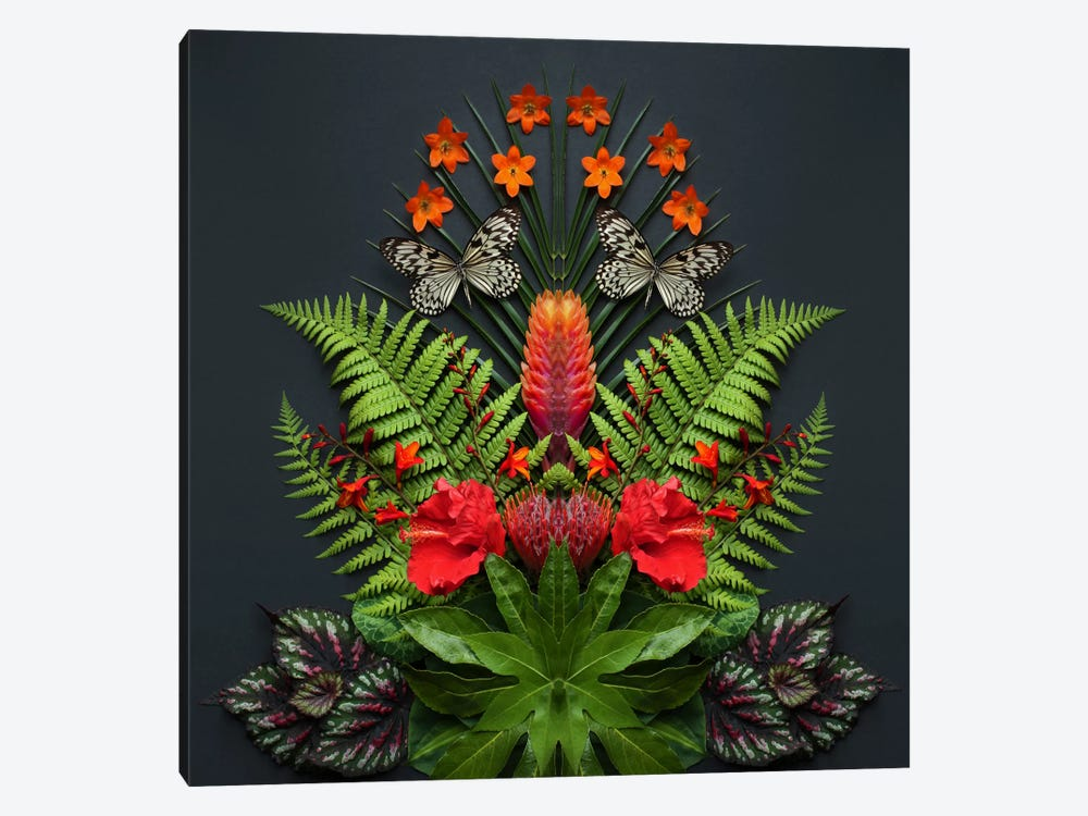 Tropical Flowers And Butterflies by Alyson Fennell 1-piece Canvas Artwork