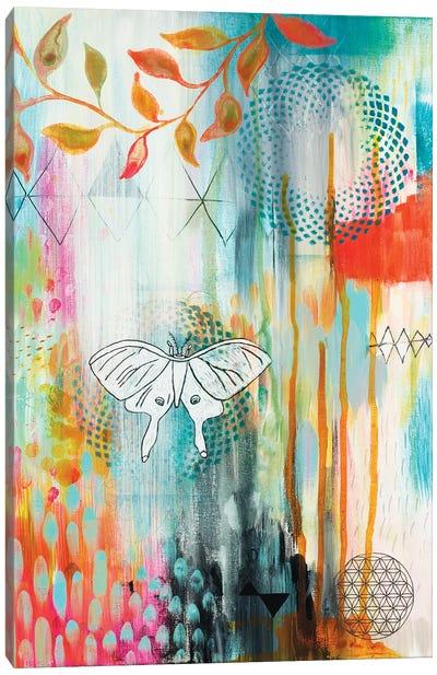 Spiro Butterfly Canvas Art Print