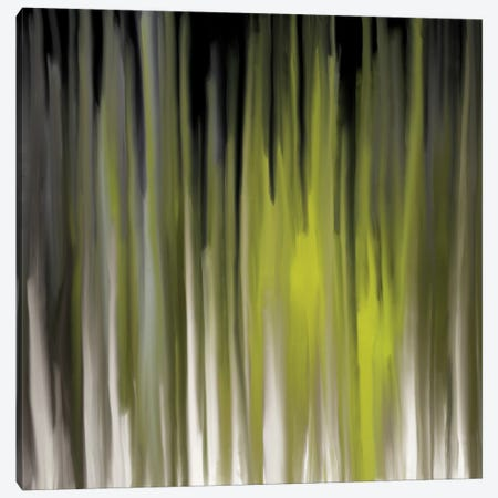 Luminous Feelings Canvas Print #FFC11} by 5by5collective Canvas Print