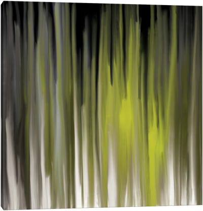 Luminous Feelings Canvas Art Print