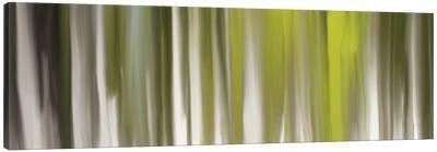 Luminous Touch Canvas Art Print