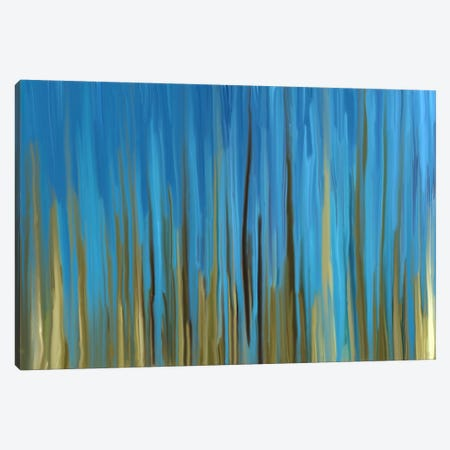 Quiet Oasis Canvas Print #FFC19} by 5by5collective Canvas Print