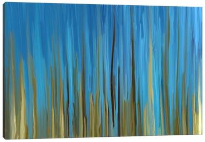 Quiet Oasis Canvas Art Print