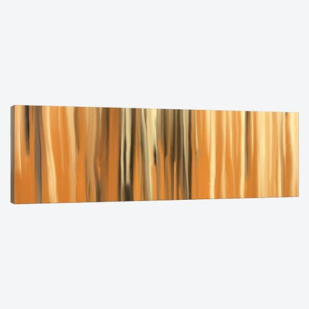 Sands of Time Canvas Print #FFC20} by 5by5collective Canvas Artwork