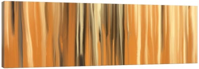 Sands of Time Canvas Art Print