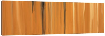 Shifting Sands Canvas Art Print