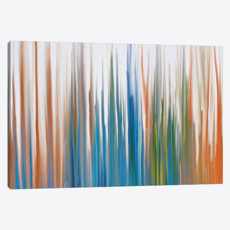 Transparent Beauty Canvas Print #FFC28} by 5by5collective Canvas Art