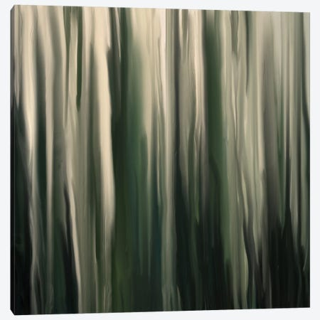Greenwood Canvas Print #FFC8} by 5by5collective Canvas Artwork