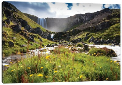 Icelandic Nature Canvas Art Print